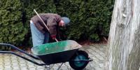 Jarko čistí priestor pod tujkami